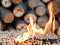 product-spark-inline-bioenergy